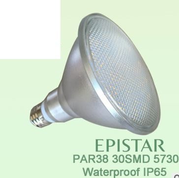 E27 PAR38 LED lights bulbs,15 watt witerproof IP65